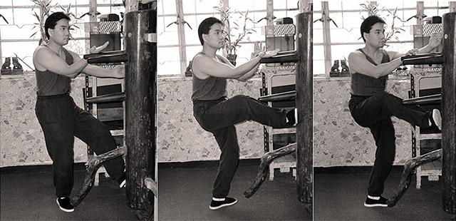 В форму ног манекена включены все существующие удары ног Вин Чун.